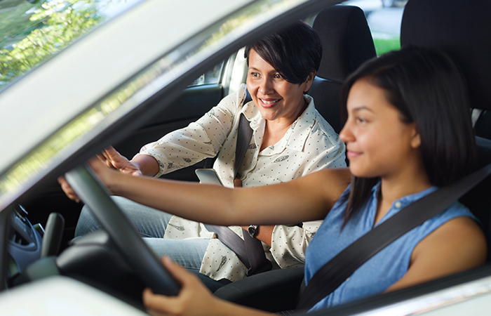 features of the Driver Instructor